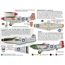 P-51D in WWII Mustangs