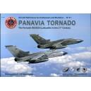 Panavia Tornado: The Tornado IDS/ECR (Luftwaffe) in the 21st Century