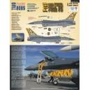 F-16C 79th FS 2005 TMOTA