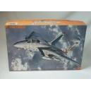 Grumman F-14A Tomcat Pacific Fleet Squadrons