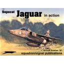Sepecat Jaguar in Action