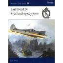 Luftwaffe Sclachtgruppen