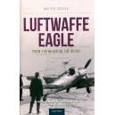 Luftwaffe Eagle - From the Me 109 to the Me262