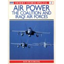 Air Power - The coalition and Iraqi armies
