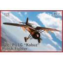 "PZL P.11g ""Kobuz"" - Polish Fighter Plane"