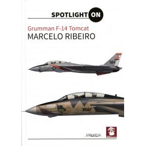 Spotlight On: Grumman F-14 Tomcat