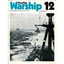 Profile Warship 12 - IJN Kongo