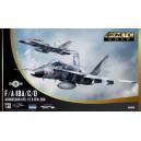 F/A-18A/C/D Aggressor VFC-12 & VFA-204